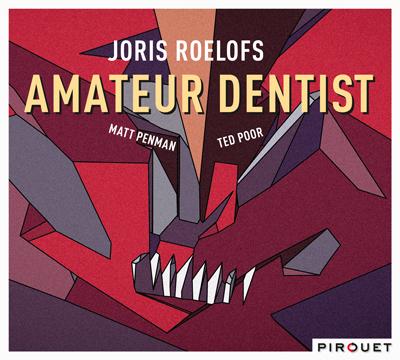 Joris-Roelofs_400 'Tandarts' Joris Roelofs laat muziek trillen en knarsen