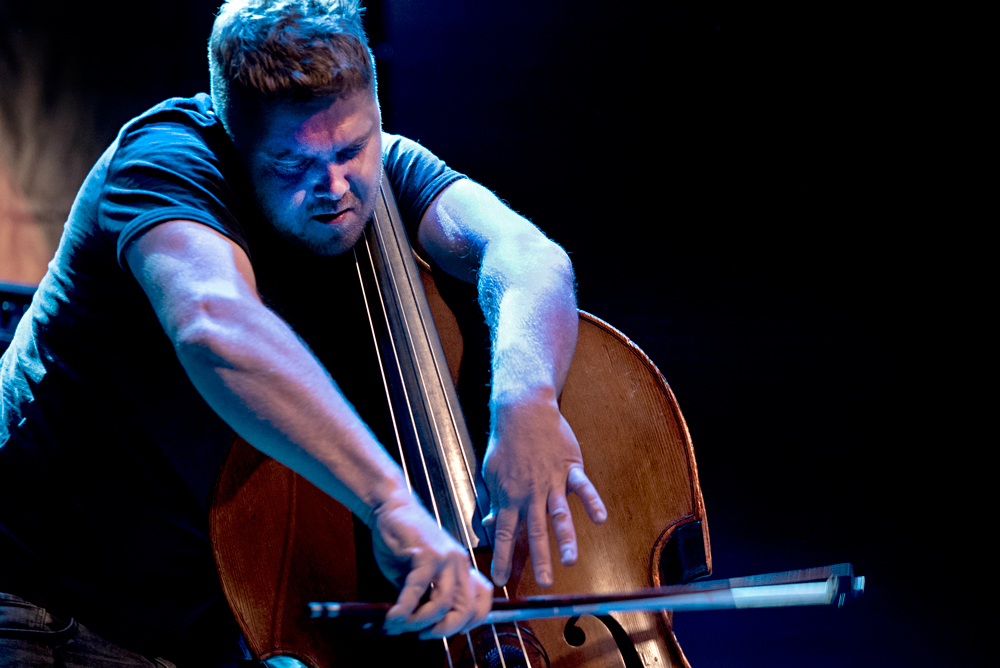 Contrabassist Nick Blacka van Gogo Penguin.